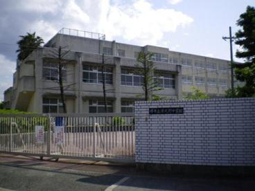 津久野中学校の画像1