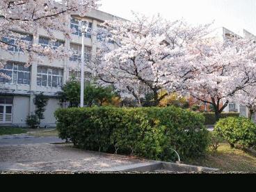 堺上高校の画像1