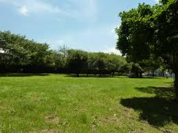 辰沼公園の画像1
