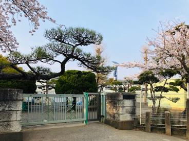 茅ヶ崎市立松林小学校の画像2