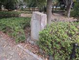 堀之内番場公園