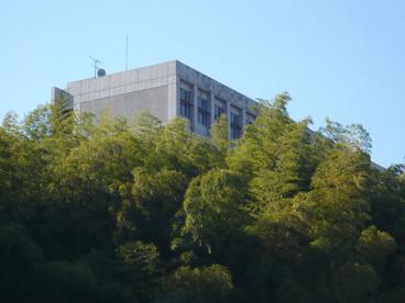 多摩美術大学 八王子キャンパスの画像3
