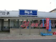 ビッグ・エー 蒲生店