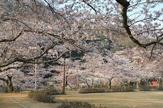 白鷺山公園