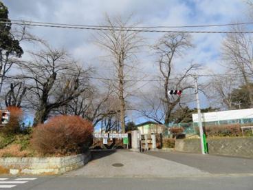 陽南小学校の画像1