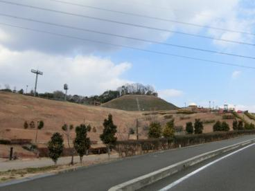 つばきの丘運動公園の画像1