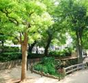 幡ヶ谷第三公園