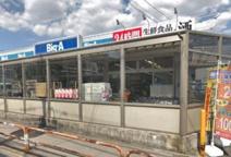 ビッグ・エー 青井店
