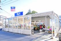 ビッグ・エー 松戸松飛台店