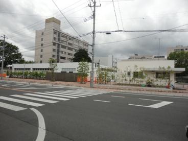 茨城大学の画像1