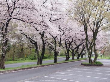 上奥富運動公園の画像1