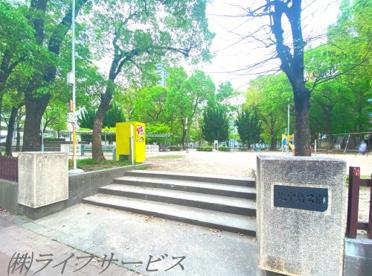 北中島公園の画像1