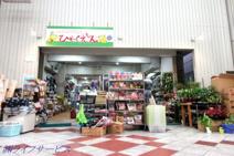 100円ショップひゃくえもん十三店