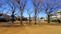ふじみ野市/上福岡6丁目公園
