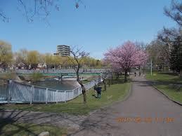 発寒川緑地の画像1