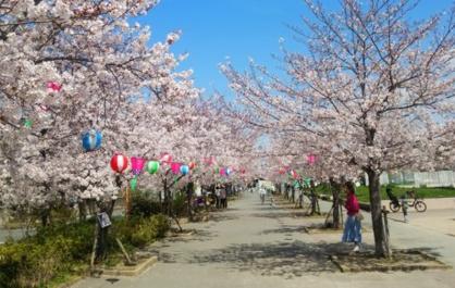 東諸福公園の画像1