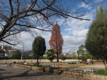 泉公園の画像1