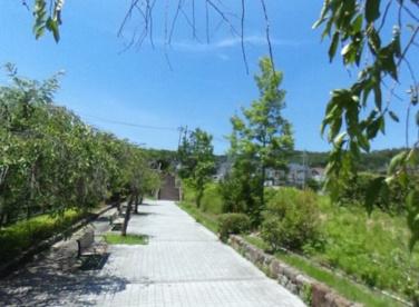 北谷公園の画像1