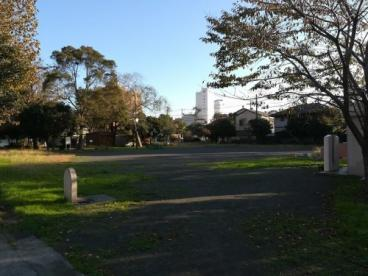 小島新田緑道の画像1
