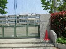 区立島根小学校