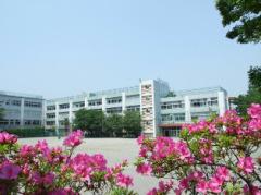 杉並区立中瀬中学校の画像1