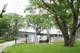 中野 四季の森公園