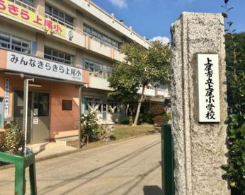 上尾市立上尾小学校の画像1