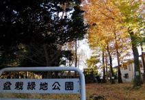 盆栽中央緑地公園