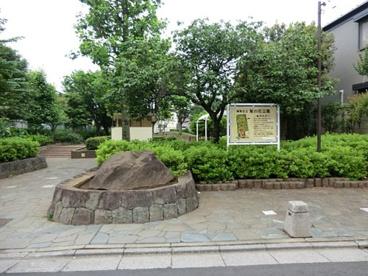 梨の花公園の画像1