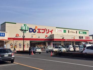 鮮Do!エブリイ 瀬戸店の画像1
