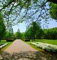 都立亀戸中央公園