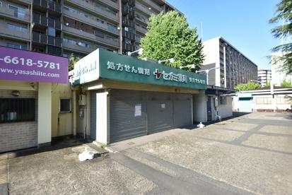 セガミ薬局八戸ノ里店の画像1