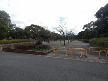 ユーカリが丘北公園の画像1