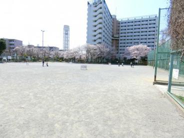 文花公園の画像1