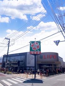 ライフ 氷川台店の画像1