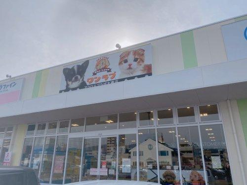 ワンラブアクロスプラザ大東店の画像