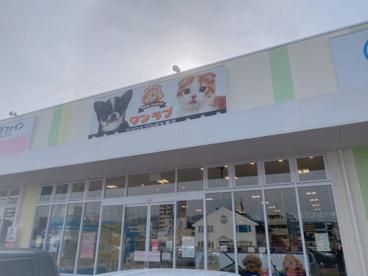 ワンラブアクロスプラザ大東店の画像1