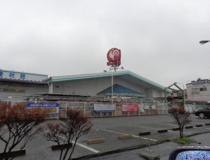 コメリハード&グリーン伊奈小室店