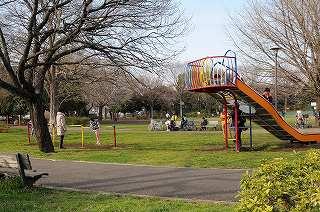 善福寺北緑地の画像1