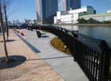 朝潮運河親水公園