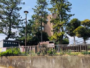 中海岸第二公園の画像2