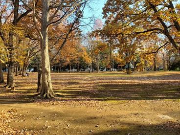 千代田公園の画像1