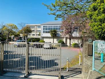 茅ヶ崎市立小出小学校の画像1