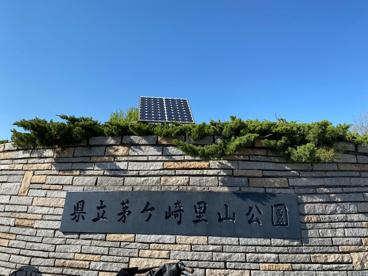 神奈川県立茅ヶ崎里山公園の画像1