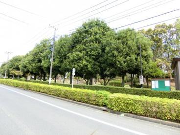 千間台第四公園の画像1
