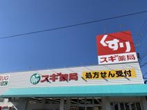 スギ薬局 幸田店