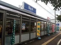 ビッグ・エー 富士見鶴馬店