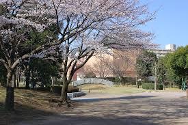 中郷緑地の画像1