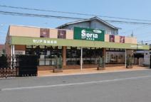 Seria(セリア) 青梅千ケ瀬店