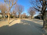 石神井台公園